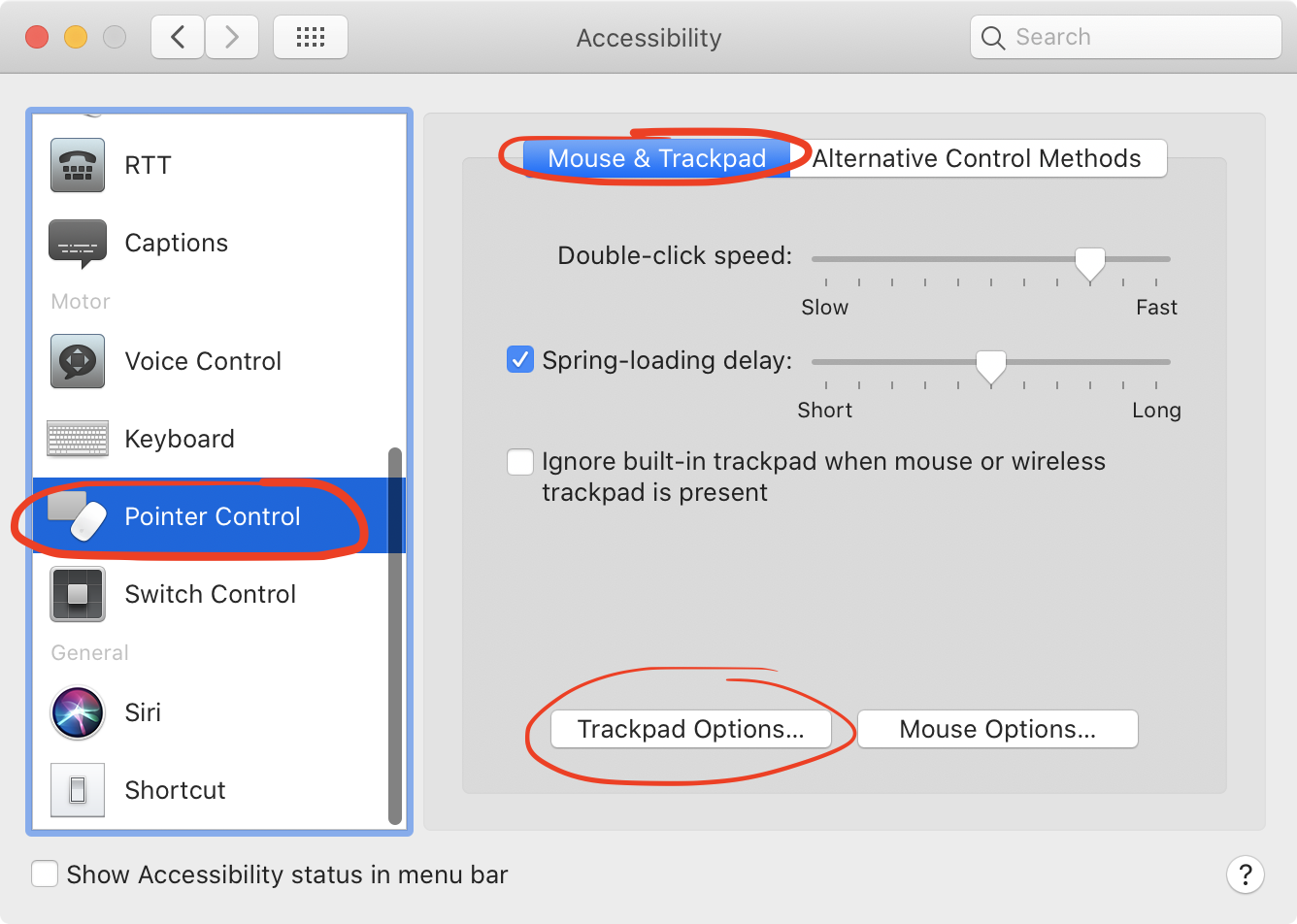 Pointer Control Setting on MacBook